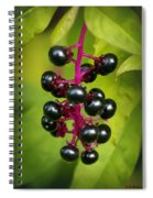 Pokeweed Spiral Notebook