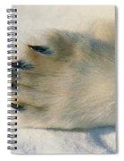 Polar Bear Paw Spiral Notebook