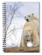 Polar Bear Spring Fling Spiral Notebook