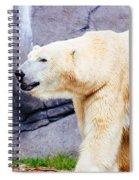 Polar Bear Walking Spiral Notebook