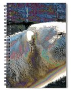 Polar Bear With Enameled Effect Spiral Notebook