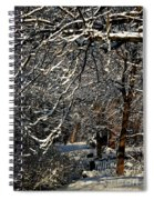 Polar Vortex Beauty Spiral Notebook