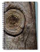 Pole 95 The Knot Spiral Notebook