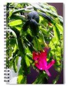 Polka Dot Easter Cactus Spiral Notebook