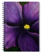 Polka Dot Purple African Violet Spiral Notebook