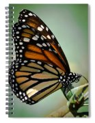 Polka Dots And Wings Spiral Notebook