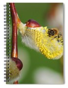 Pollen Feast Spiral Notebook