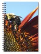 Pollinating Sunflower Seeds Spiral Notebook