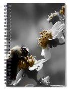 Pollination  Spiral Notebook