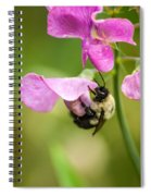 Pollination Nation Viii Spiral Notebook