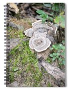 Polypores And Moss Spiral Notebook