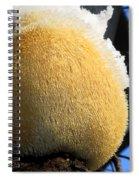Pom Pom Mushroom Spiral Notebook