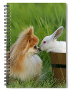 Pomeranian With Rabbit Spiral Notebook
