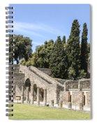 Pompeii 2 Spiral Notebook