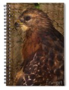 Ponce Inlet Hawk Spiral Notebook