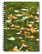 Pond 2 Spiral Notebook