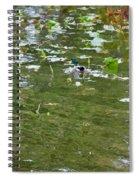 Pond 4 Spiral Notebook