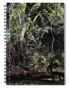 Pond Apple-1 Spiral Notebook