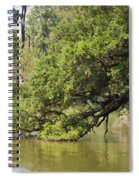 Pond At Norfolk Botanical Garden 10 Spiral Notebook