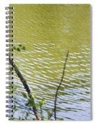 Pond At Norfolk Botanical Garden 8 Spiral Notebook