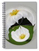 Pond Flower Orb Spiral Notebook