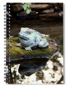 Pond Frog Statuette Spiral Notebook