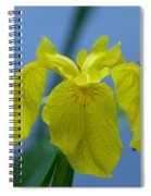 Pond Iris Spiral Notebook