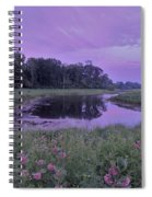 Pond Light Spiral Notebook