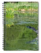 Pond Pairs Dancing Spiral Notebook