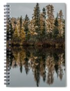 Pond Reflections Spiral Notebook