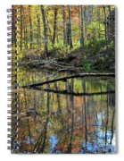 Pond Reflects Spiral Notebook