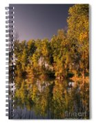Pond Spiral Notebook