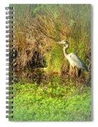 Pond Wildlife Spiral Notebook