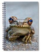 Pondering Frog Spiral Notebook