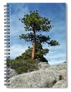 Ponderosa Pine And Granite Boulders Spiral Notebook