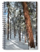 Ponderosa Winter Spiral Notebook