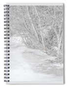 Pondside Thaw Spiral Notebook