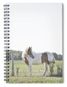 Pony Pride Spiral Notebook