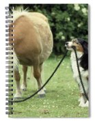 Pony With Lead Rope Held By Sitting Dog Spiral Notebook
