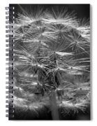 Poof - Black And White Spiral Notebook
