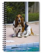 Pool Side Basset Spiral Notebook