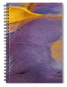 Pools Of Gold Spiral Notebook