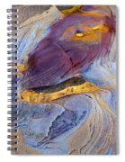 Pools Of Gold II Spiral Notebook