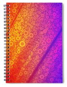 Pop-13-b Spiral Notebook