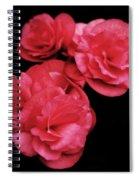 Pop Of Pink Spiral Notebook