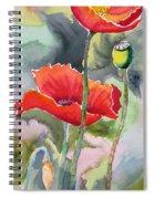 Poppies 3 Spiral Notebook