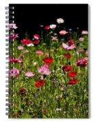 Poppies Gettin Sun Spiral Notebook