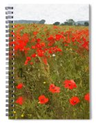 Poppies IIi Spiral Notebook