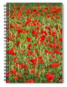 Poppies In Wheat Spiral Notebook