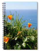 Poppies On The Pacific Spiral Notebook